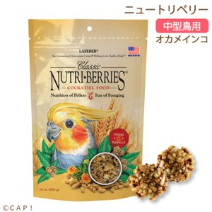 賞味期限:2020/3/25ラフィーバー ニュートリベリーオカメインコ 10oz(284g)|torimura