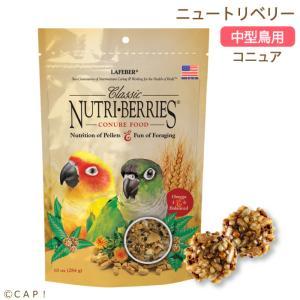 CAP! 鳥の餌 賞味期限:2020/11/7 ラフィーバー ニュートリベリー コニュア 10oz(284g)|torimura