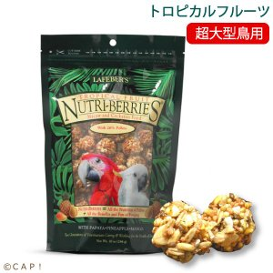 賞味期限:2020/4/2ラフィーバー トロピカルフルーツマコウ(10oz/284g)|torimura