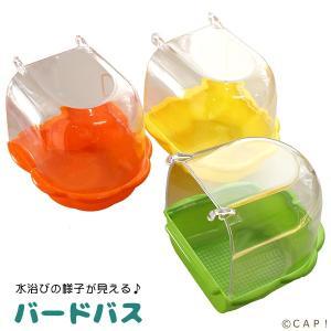 CAP! 鳥のおもちゃ カーリー クリアトップ バードバス 88332|torimura