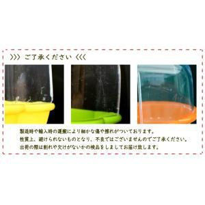 (カーリー) クリアトップ バードバス|torimura|04