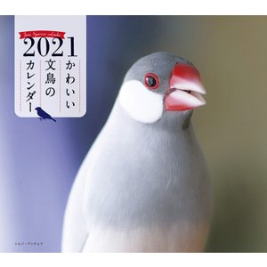 誠文堂新光社 2021年 ミニ判カレンダー かわいい文鳥のカレンダー|torimura
