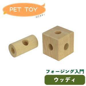 CAP! 鳥のおもちゃ SANKO a102フォージング入門 ウッディ|torimura