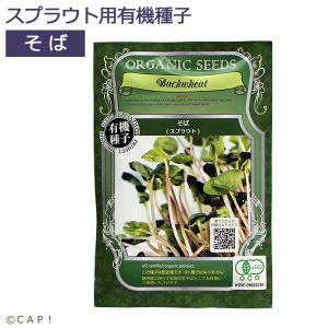 【GFP】スプラウト専用有機種子 そば|torimura