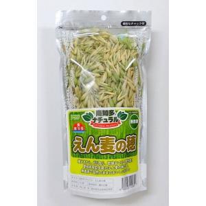 賞味期限:2019/4/11【アラタ】南知多ナチュラルえん麦の穂 40g torimura