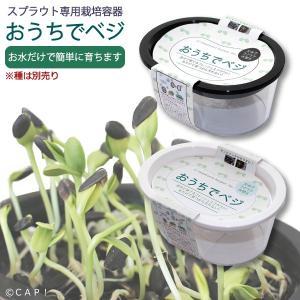 【GFP】おうちでベジ スプラウト専用栽培容器※容器のみ|torimura