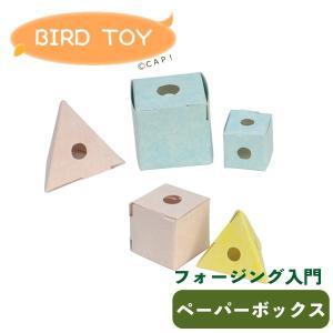 CAP! 鳥のおもちゃ SANKO b102フォージング入門 ペーパーボックス|torimura
