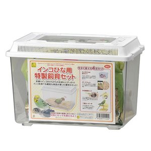 【SANKO】インコひな用 特製飼育セット|torimura