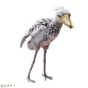 【HANSA】ハシビロコウ 35 SHOEBILL BIRD|torimura