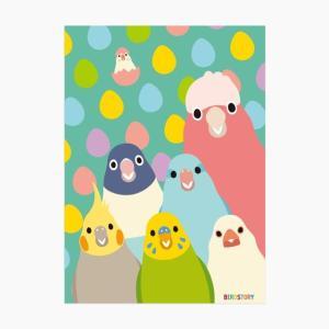 【Birdstory】SMILEBIRD A4クリアファイル|torimura