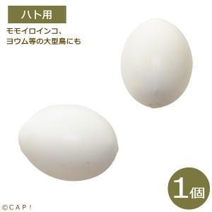 擬卵 ハト用|torimura