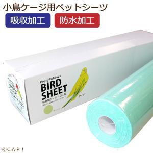 【ハッピーホリディ】小鳥用シーツ 120枚 グリーン|torimura