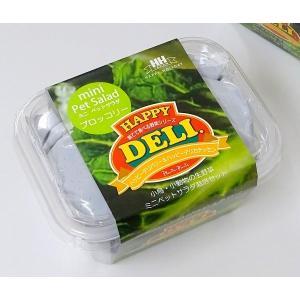 【ハッピーホリディジャパン】 ミニペットサラダ栽培セットブロッコリー ※ミニ緑※|torimura