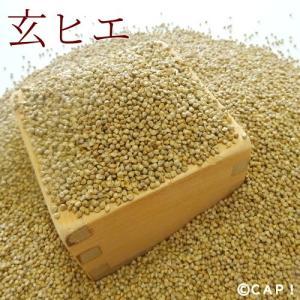 【国内産】玄ヒエ 100g|torimura