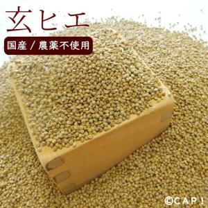 CAP! 鳥の餌 国内産/農薬不使用 玄ヒエ 200g|torimura