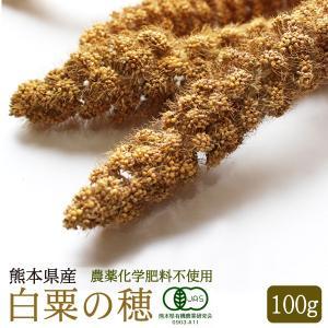 【熊本県産】有機JAS認定品 白粟の穂 100g 2018年産 ※緑ラベル※|torimura