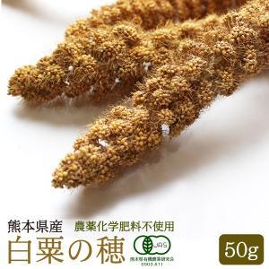 【熊本県産】有機JAS認定品 白粟の穂 50g 2018年産 ※茶ラベル※|torimura