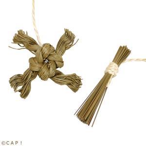 CAP! 鳥のおもちゃ いぐさ かじりーず 忍法かじかじ帖|torimura