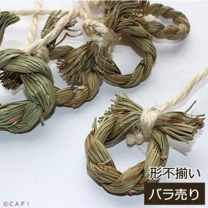 CAP! 鳥のおもちゃ 単品 かじりーず リング系 1個|torimura