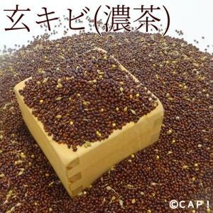 ※濃茶【国内産】玄キビ(濃茶) 100g|torimura