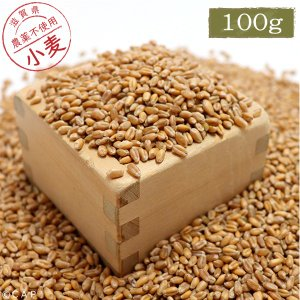 【国産】小麦 100g|torimura