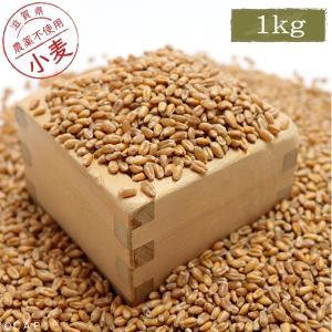 【国産】小麦 1kg|torimura