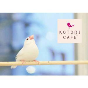 【ことりカフェ】ことりカフェBunchoメモ帳 torimura