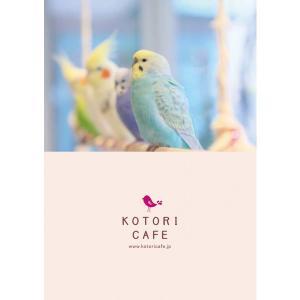 【ことりカフェ】A4クリアファイルことりカフェ表参道のことりたち torimura