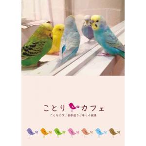【ことりカフェ】メモ帳ことりカフェ表参道のセキセイ会議 torimura
