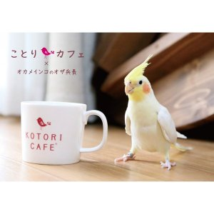 【ことりカフェ】メモ帳オザ兵長ミニメモ帳 torimura