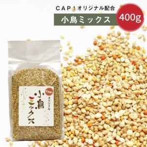 小鳥ミックス 500g|torimura