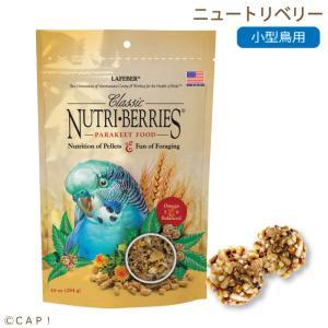CAP! 鳥の餌 賞味期限:2021/1/24ラフィーバー ニュートリベリーパラキート 10oz 284g |torimura