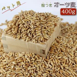 オーツ麦 500g|torimura