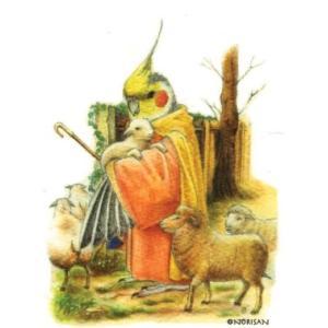【NORISAN】ポストカード オカメの良い羊飼い|torimura