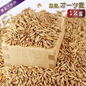 【国産】オーツ麦 1kg|torimura