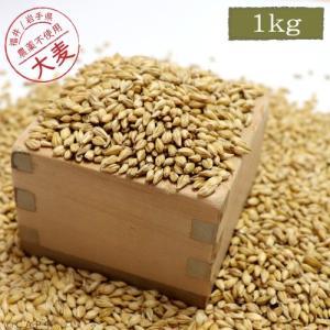 【国産】大麦 1kg|torimura