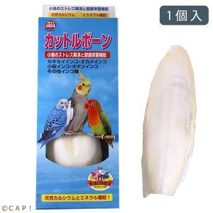 ペッズイシバシ カットルボーンイシバシ 大※青箱※|torimura