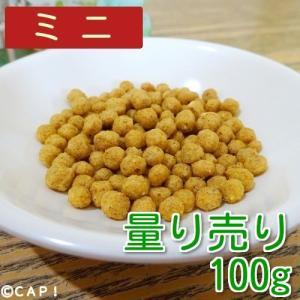 【量り売り】【PSITTACUS】メンテナンスミニ フォーミュラ 100g|torimura