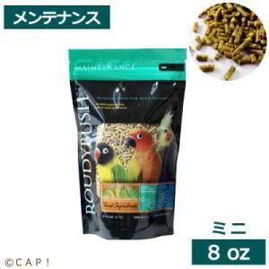 CAP! 鳥の餌 賞味期限2022/3/12 ラウディブッシュ デイリーメンテナンスミニ 8oz 227g |torimura
