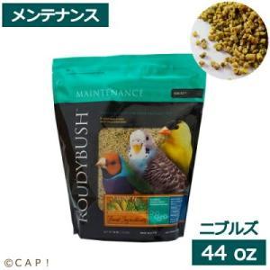CAP! 鳥の餌賞味期限:2022/2/21ラウディブッシュ デイリーメンテナンスニブルズ 44oz1.25kg|torimura