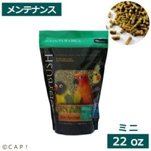 CAP! 鳥の餌 賞味期限:2022/3/12ラウディブッシュ デイリーメンテナンスミニ 22oz 624g |torimura