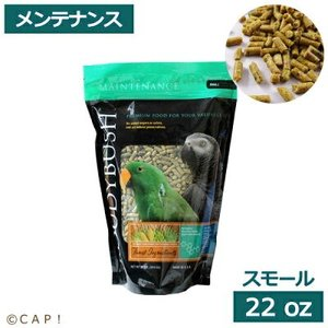 賞味期限:2020/5/4【ラウディブッシュ】デイリーメンテナンススモール 22oz(624g)|torimura