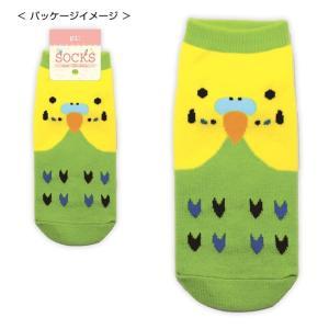 【トーシンパック】ソックス セキセイインコ緑 torimura