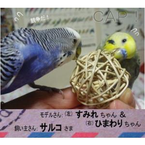 マンチボール 4cm|torimura|03