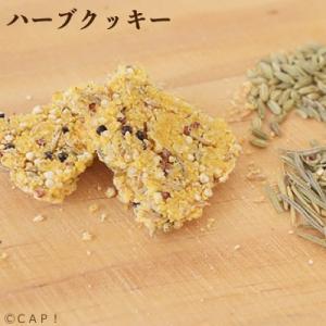 賞味期限:【Sunny Kitchen】2020/2/29 ハーブクッキー 20g|torimura