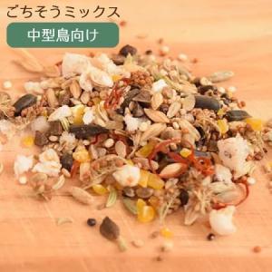 賞味期限:2020/5/31【Sunny Kitchen】シードと雑穀のごちそうミックス 中型鳥向け 80g|torimura