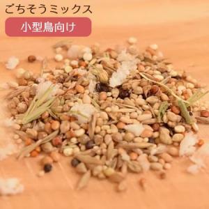 賞味期限:2020/4/30【Sunny Kitchen】シードと雑穀のごちそうミックス 小型鳥向け 50g|torimura