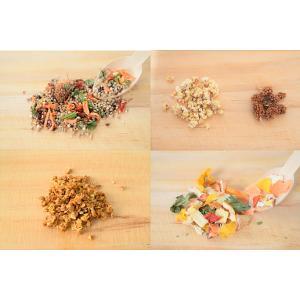 賞味期限:【Sunny Kitchen】2020/5/31 基本の食事セット(小型鳥向け)|torimura