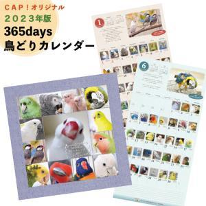 CAP!  2021年版 365days 鳥どりカレンダー オリジナルカレンダー|torimura