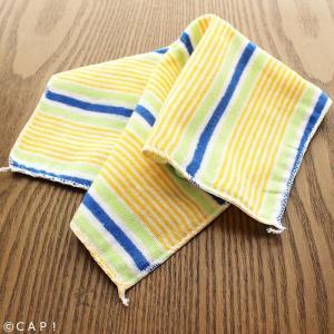 とりきち横丁 CAP! 鳥用品 とりきち横丁 インコ毛布|torimura